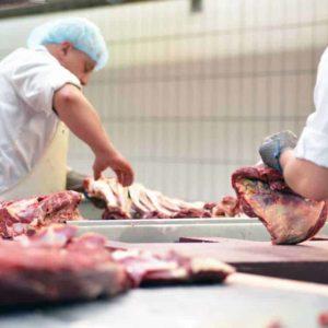 estudiar tecnología de la carne