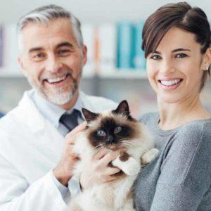 Estudiar MBA en Dirección y Gestión de Clínicas Veterinarias