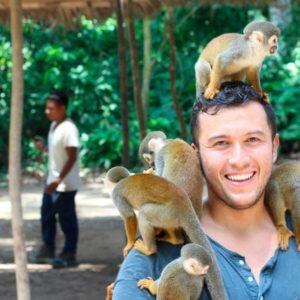 Estudiar el Curso de Cuidados de Animales Salvajes, Zoológicos y Acuarios online o a distancia