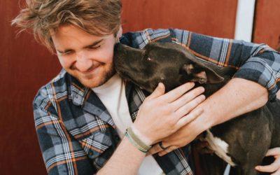 Perros de terapia: razas, capacidades y casos de intervención