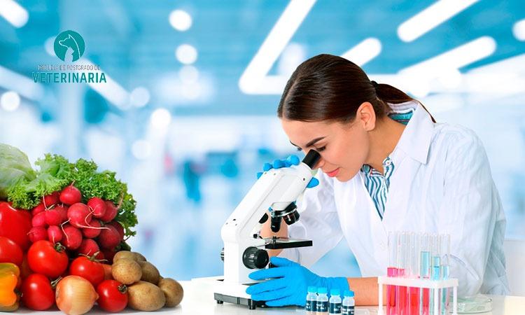 7 principios del sistema APPCC que garantizan la inocuidad alimentaria